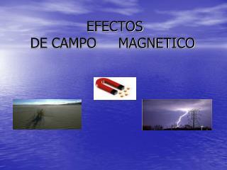 EFECTOS  DE CAMPO     MAGNETICO