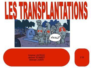 LES TRANSPLANTATIONS