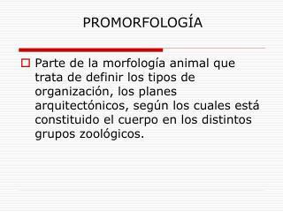 PROMORFOLOG A
