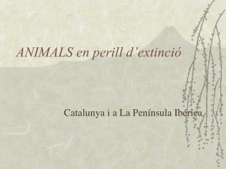 ANIMALS en perill d extinci