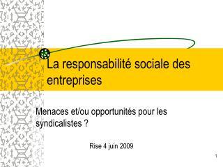 La responsabilit  sociale des entreprises
