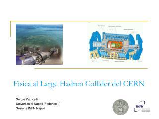 Fisica al Large Hadron Collider del CERN