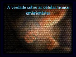 A verdade sobre as c lulas tronco embrion rias