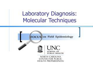 Laboratory Diagnosis:  Molecular Techniques