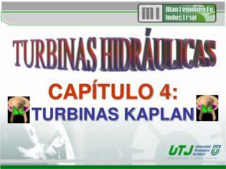 CAP TULO 4:  TURBINAS KAPLAN