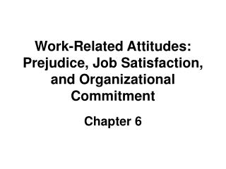 Work-Related Attitudes: Prejudice, Job Satisfaction, and Organizational Commitment