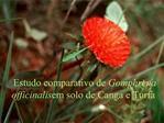 Estudo comparativo de Gomphrena officinalis em solo de Canga e Turfa