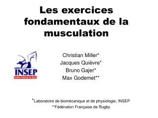 Les exercices fondamentaux de la musculation