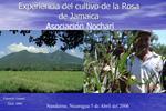 Experiencia del cultivo de la Rosa de Jamaica  Asociaci n Nochari