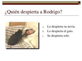 Qui n despierta a Rodrigo