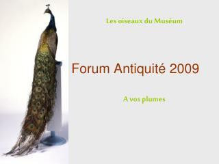 Forum Antiquit  2009