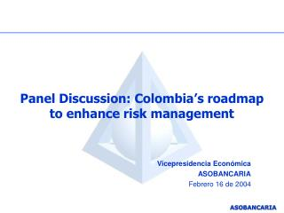 Panel Discussion: Colombia s roadmap to enhance risk management