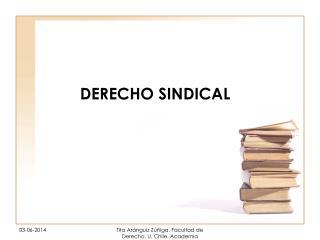 DERECHO SINDICAL