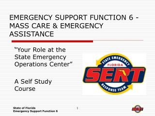 EMERGENCY SUPPORT FUNCTION 6 - MASS CARE  EMERGENCY ASSISTANCE