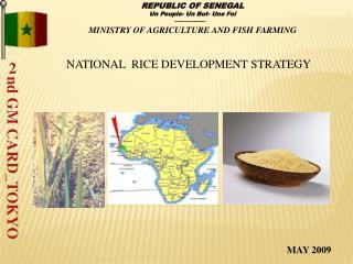 NATIONAL  RICE DEVELOPMENT STRATEGY
