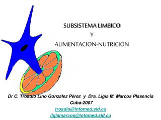 SUBSISTEMA LIMBICO  Y  ALIMENTACION-NUTRICION