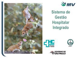 Sistema de Gest o Hospitalar Integrado