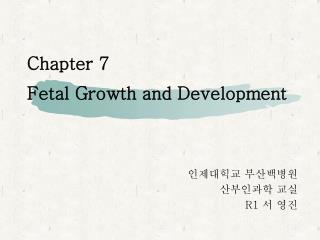 Chapter 7  Fetal Growth and Development