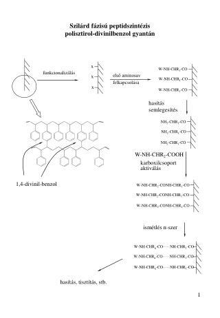 Szil rd f zis  peptidszint zis polisztirol-divinilbenzol gyant n