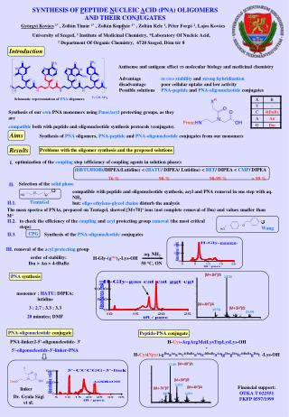 SYNTHESIS OF PEPTIDE NUCLEIC ACID PNA OLIGOMERSAND THEIR CONJUGATES