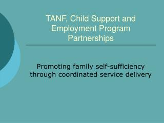 TANF, Child Support and Employment Program Partnerships