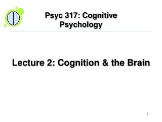 Lecture 2: Cognition  the Brain