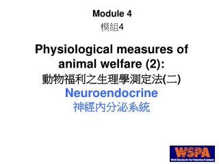 Physiological measures of animal welfare 2:   Neuroendocrine