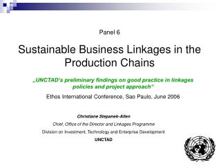 Panel 6 Sustainable Business Linkages in the Production Chains