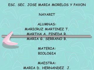 ESC. SEC. JOSE MARIA MORELOS Y PAVON  NAYARIT  ALUMNAS: MARICRUZ MARTINEZ T. MARTHA A. PINEDA R. MARIA G. SERRANO B.  MA