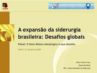 A expans o da siderurgia brasileira: Desafios globais