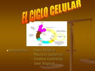 Integrantes : - Pablo Medina                             - Mauricio Gutierrez                             - Cristina Con