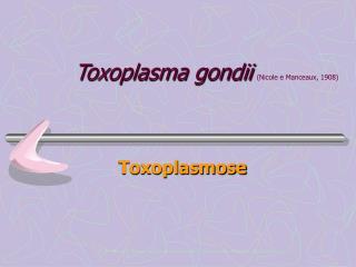 Toxoplasma gondii Nicole e Manceaux, 1908