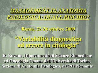R. Navone, Dipartimento di Scienze Biomediche ed Oncologia Umana dell Universit  di Torino, Sezione di Anatomia Patologi