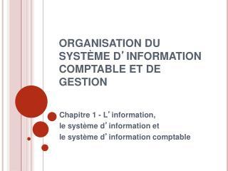 ORGANISATION DU SYST ME D INFORMATION COMPTABLE ET DE GESTION