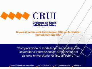 Gruppo di Lavoro della Commissione CRUI per le relazioni internazionali 2003-2004     Comparazione di modelli per la coo