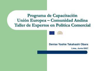 Programa de Capacitaci n Uni n Europea   Comunidad Andina Taller de Expertos en Pol tica Comercial