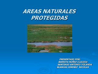 AREAS NATURALES PROTEGIDAS