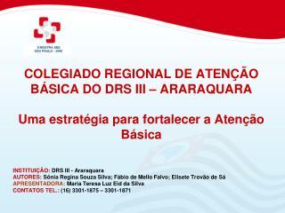 COLEGIADO REGIONAL DE ATEN  O B SICA DO DRS III   ARARAQUARA    Uma estrat gia para fortalecer a Aten  o B sica