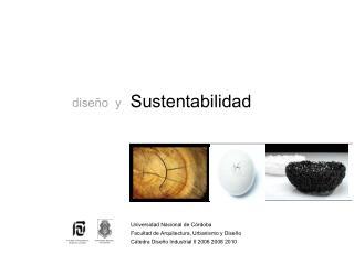 La SUSTENTABILIDAD y el COMPROMISO SOCIAL,  iconos del proceso de INSTITUCIONALIZACI N  del DISE O INDUSTRIAL como PROFE