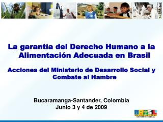 La garant a del Derecho Humano a la Alimentaci n Adecuada en Brasil  Acciones del Ministerio de Desarrollo Social y Comb