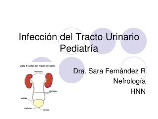Infecci n del Tracto Urinario Pediatr a