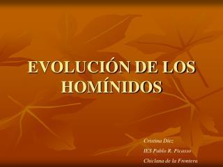EVOLUCI N DE LOS HOM NIDOS