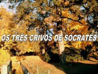 OS TR S CRIVOS DE S CRATES