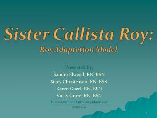 Presented by: Sandra Elwood, RN, BSN Stacy Christensen, RN, BSN Karen Gozel, RN, BSN Vicky Grove, RN, BSN Minnesota Stat