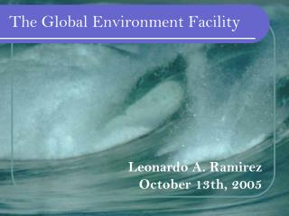The Global Environment Facility