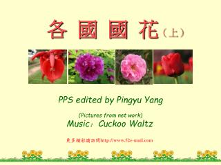 PPS edited by Pingyu Yang Pictures from net work