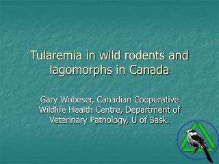 Tularemia in wild rodents and lagomorphs in Canada