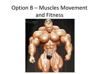 Option B   Muscles Movement and Fitness