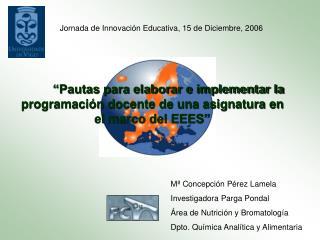 Pautas para elaborar e implementar la programaci n docente de una asignatura en el marco del EEES