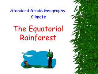 The Equatorial Rainforest